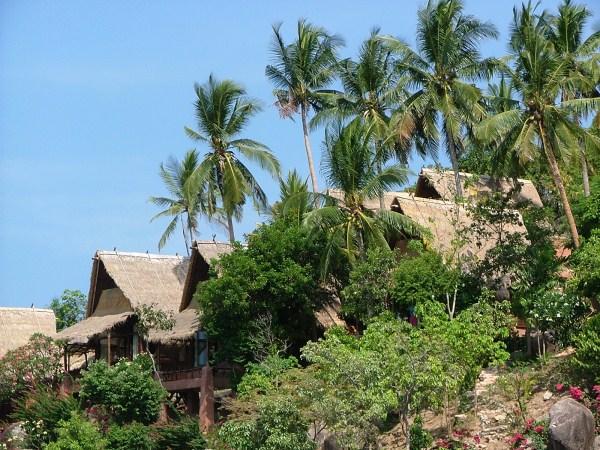 Koh Tao Die Sch 246 Nsten Tropischen Inseln Der Welt