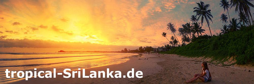 Trauminsel Sri Lanka