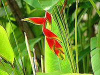 Bali Luxus © tropical-travel.de
