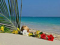 Mauritius © Daniel Halfmann | Dreamstime.com