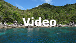 Koh Tao Video