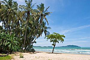 Tamarindo Beach, Costa Rica © Antonio Nunes | 123RF.com