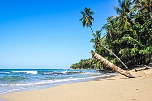 Cahuita Beach, Costa Rica © Diego Gardini | 123RF.com
