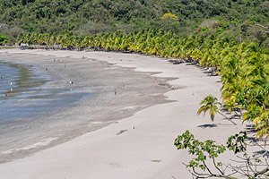 Samara Beach, Costa Rica © iferol | 123RF.com