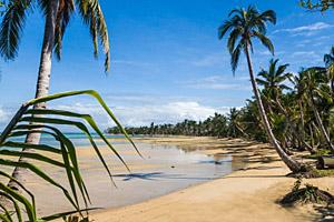 Madagaskar Sainte Marie © Pierre-Yves Babelon | 123RF.com