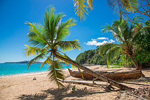 Madagaskar © Oscar D Arcangelo | 123RF.com