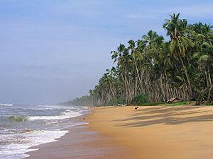 Sri Lanka beach © Nadezda Glazova - Dreamstime.com