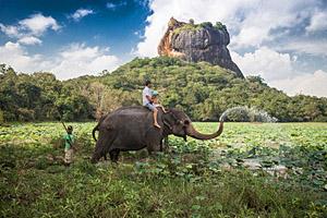 Sigiriya, Sri Lanka © Paul Prescott   123RF.com