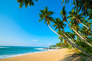 Kalutara beach, Sri Lanka © Anton Gvozdikov   123RF.com