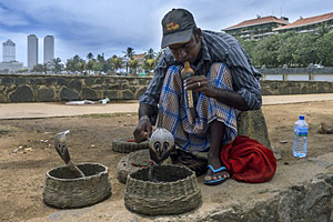 Colombo, Sri Lanka © Thomas Wyness   123RF.com
