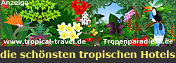 die schönsten tropischen Hotels und Resorts